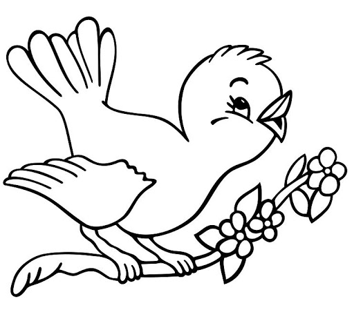 Birds clipart coloring. Page