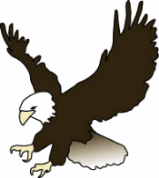 Eagles clipart. Eagle birds download