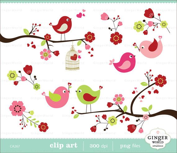 Love and blossom spring. Birds clipart flower