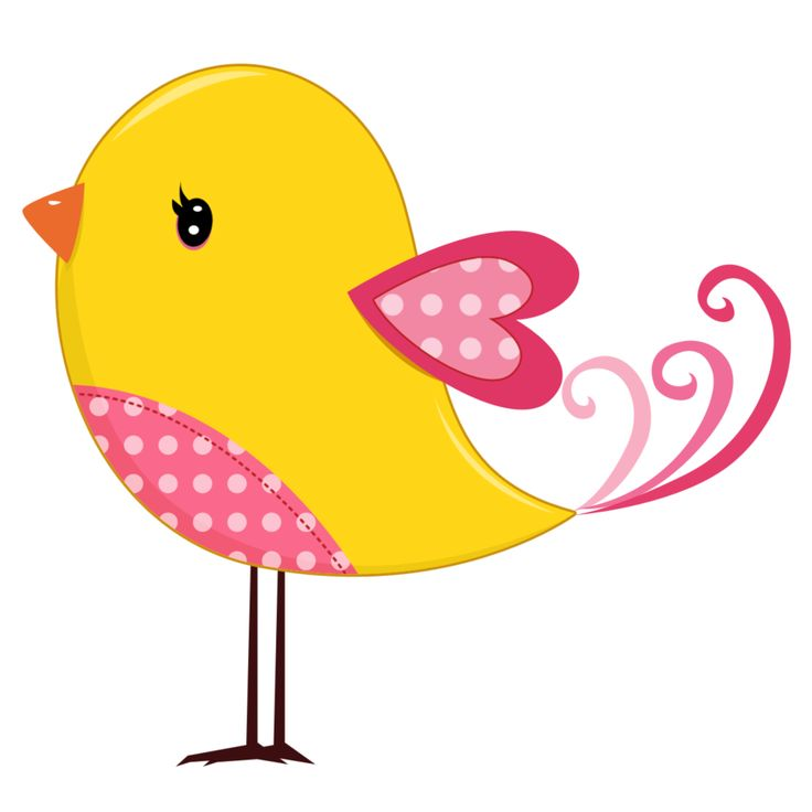 Birds clipart magical.  best bird clip