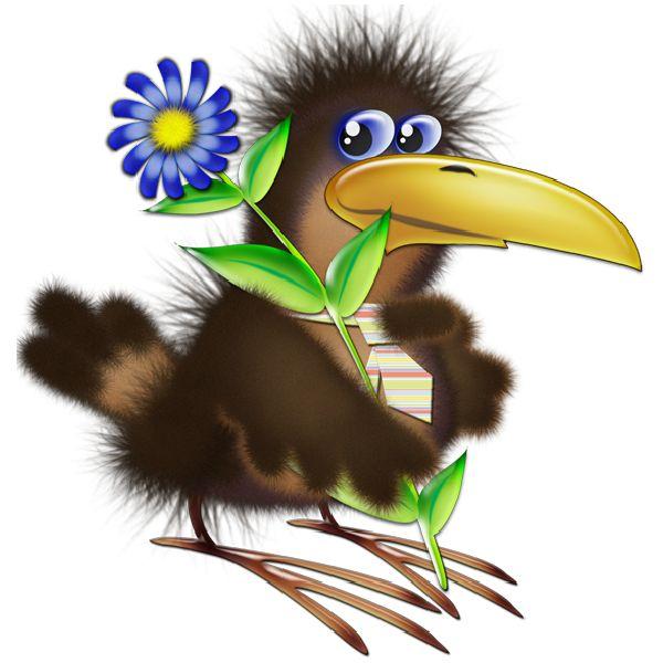 best madarak images. Birds clipart mail