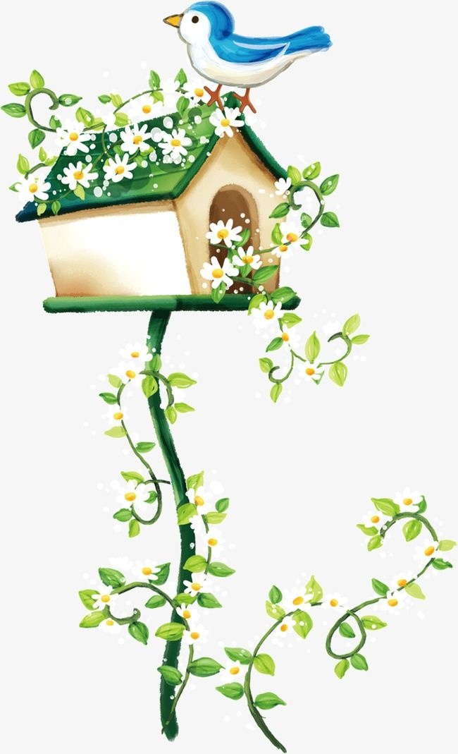 Mailbox of a feather. Birds clipart mail