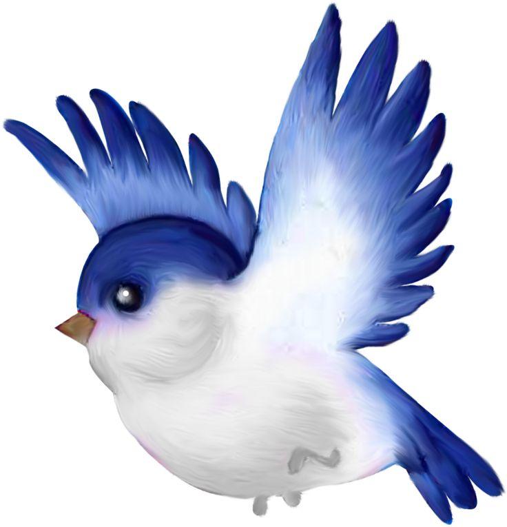 Birds clipart mail.  best cartoon images
