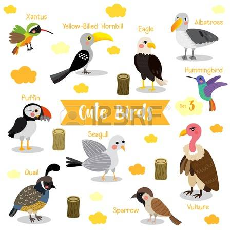 Birds clipart name. Bird pencil and in