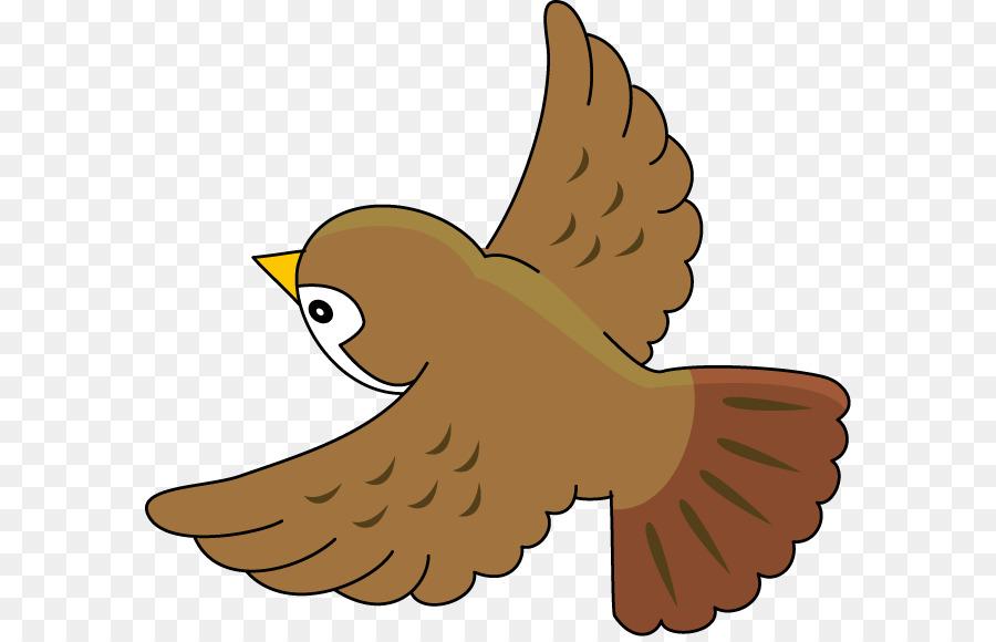 Bird house sparrow common. Birds clipart nightingale
