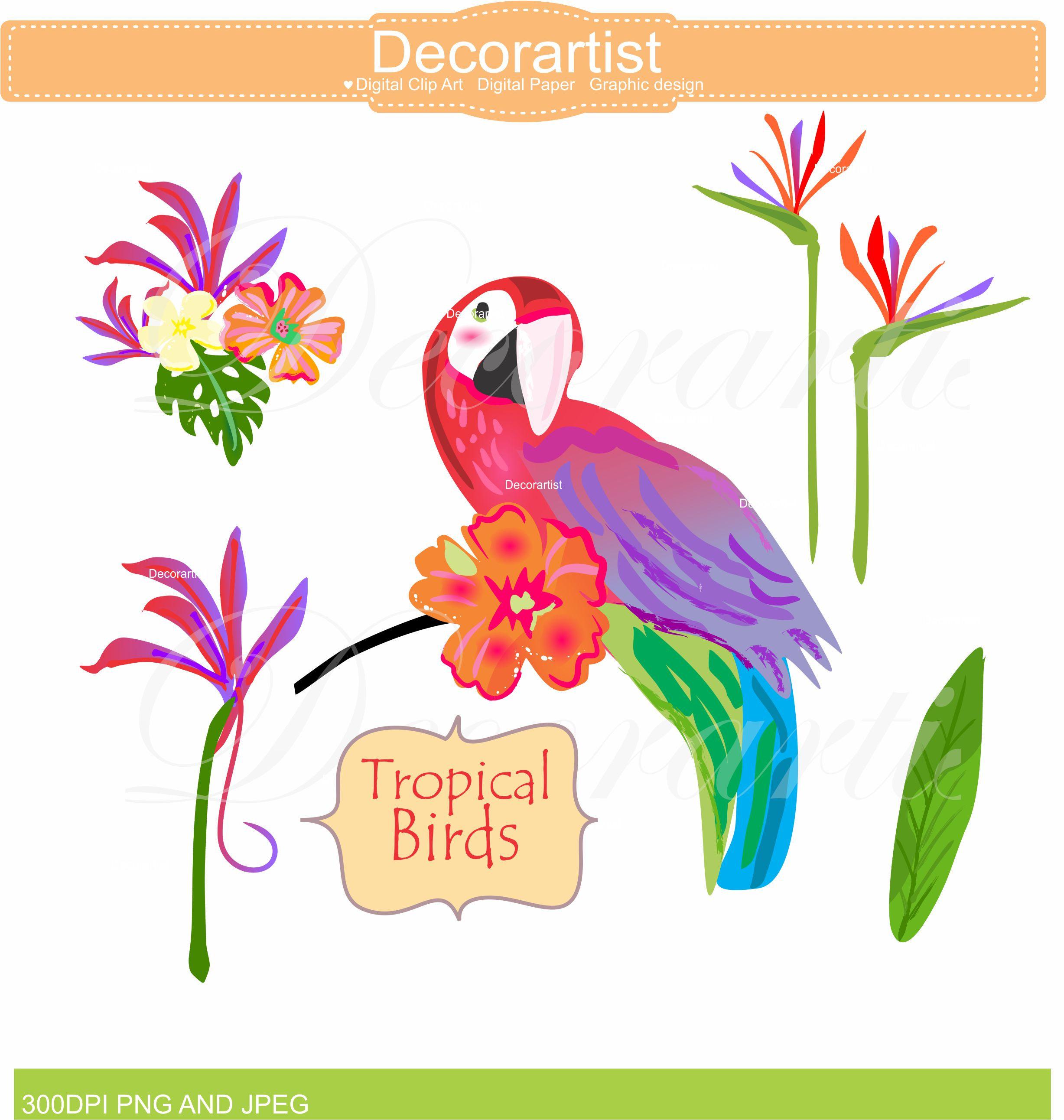 birds clipart paradise