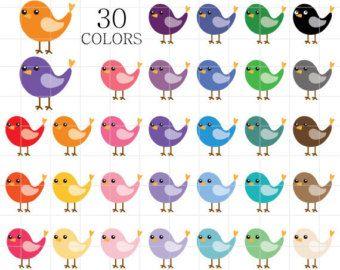 Bird clip art pets. Birds clipart rainbow