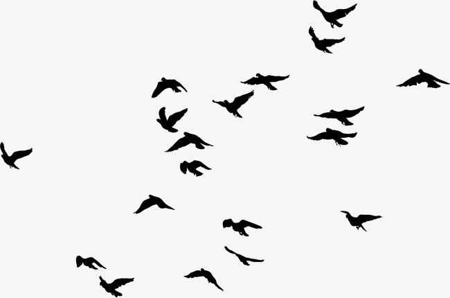Bird clipart simple. Black birds png image