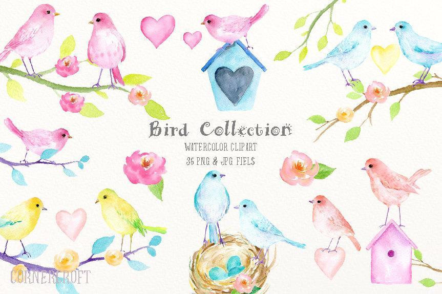 Birds clipart watercolor. Bird clip art collection