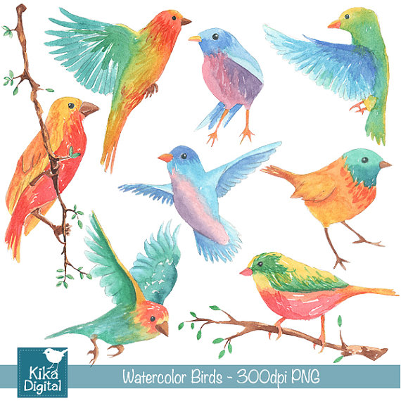 Birds clipart watercolor. Hand painted colorful card
