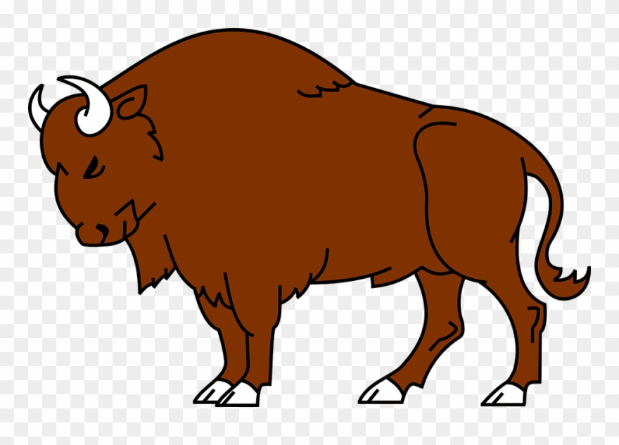 Clip art royalty free. Bison clipart