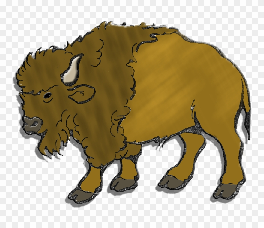 Herd american png download. Buffalo clipart bison
