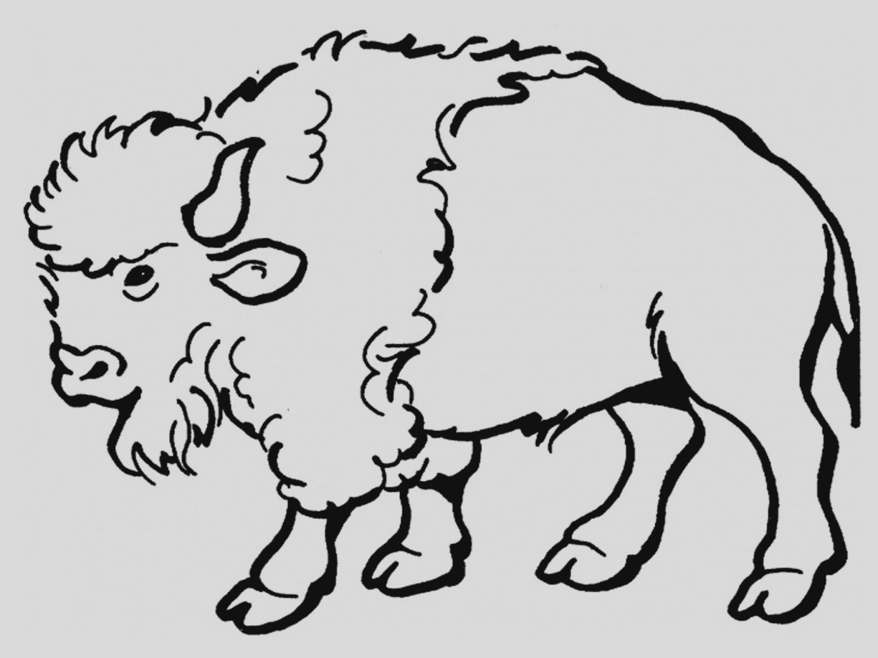 Bison clipart. Gallery of clip art