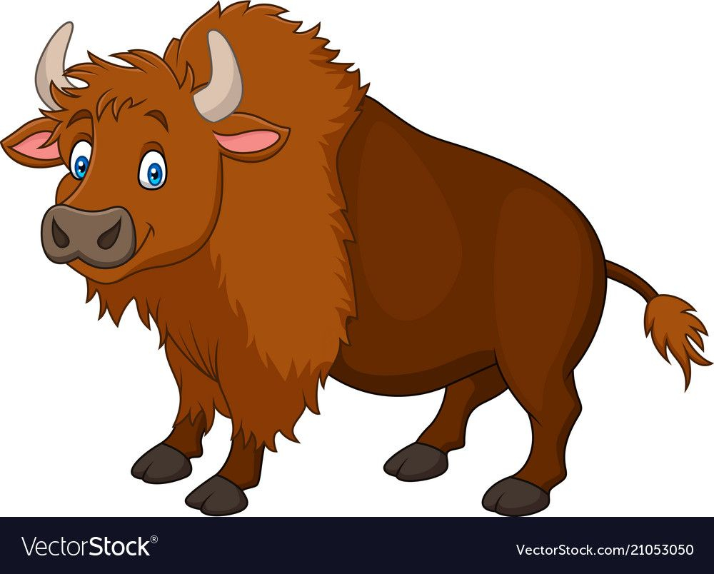 Bison clipart. For free images