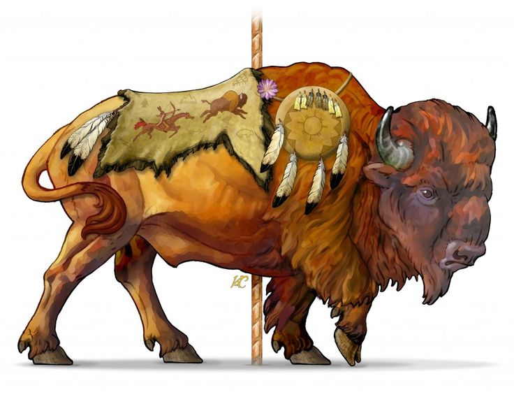 Bison clipart american bison.  best buffalos images