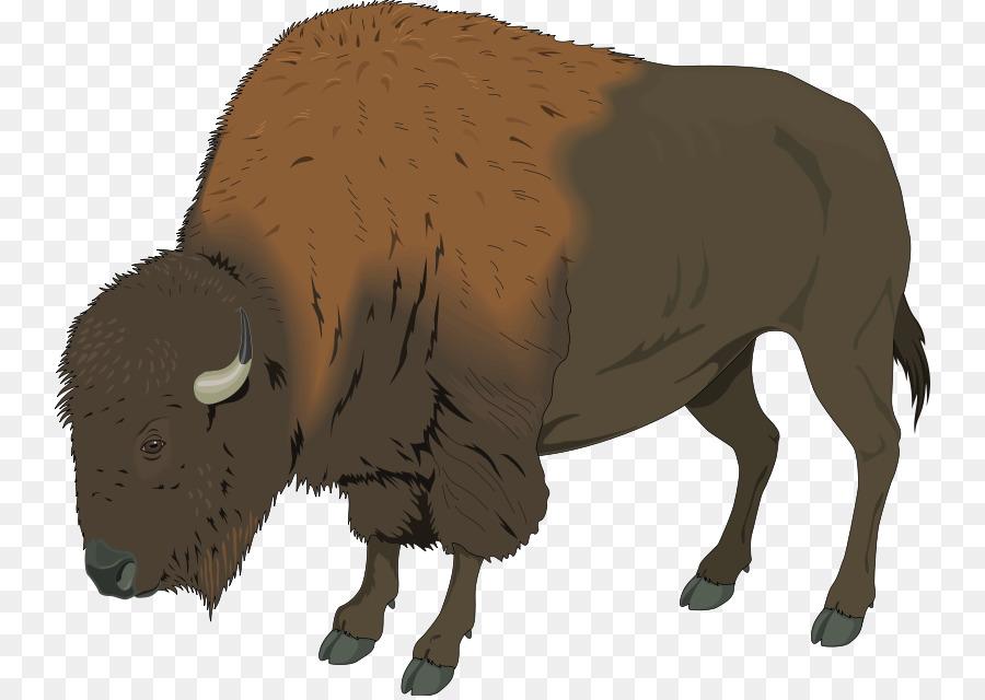 Deer clip art png. Bison clipart american bison