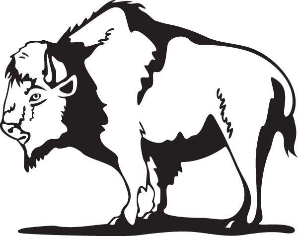 Or american bison animal. Buffalo clipart stencil