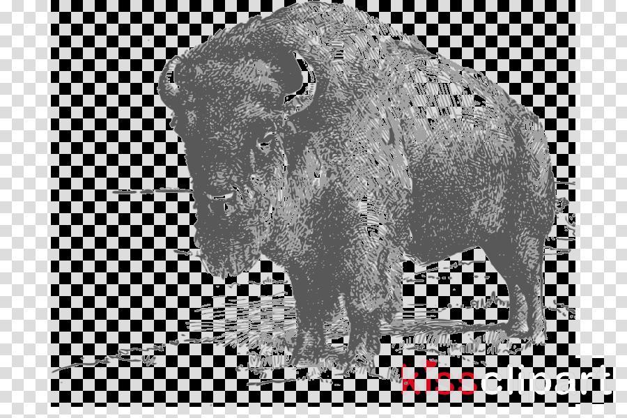 Bison clipart american bison. Clip art wildlife ox