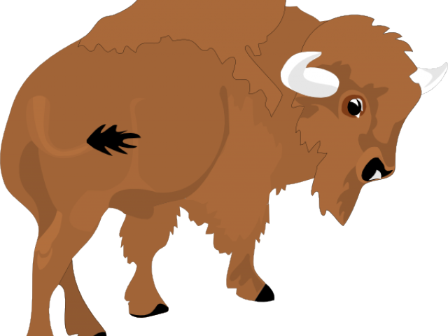 Bison clipart angry. Free download clip art