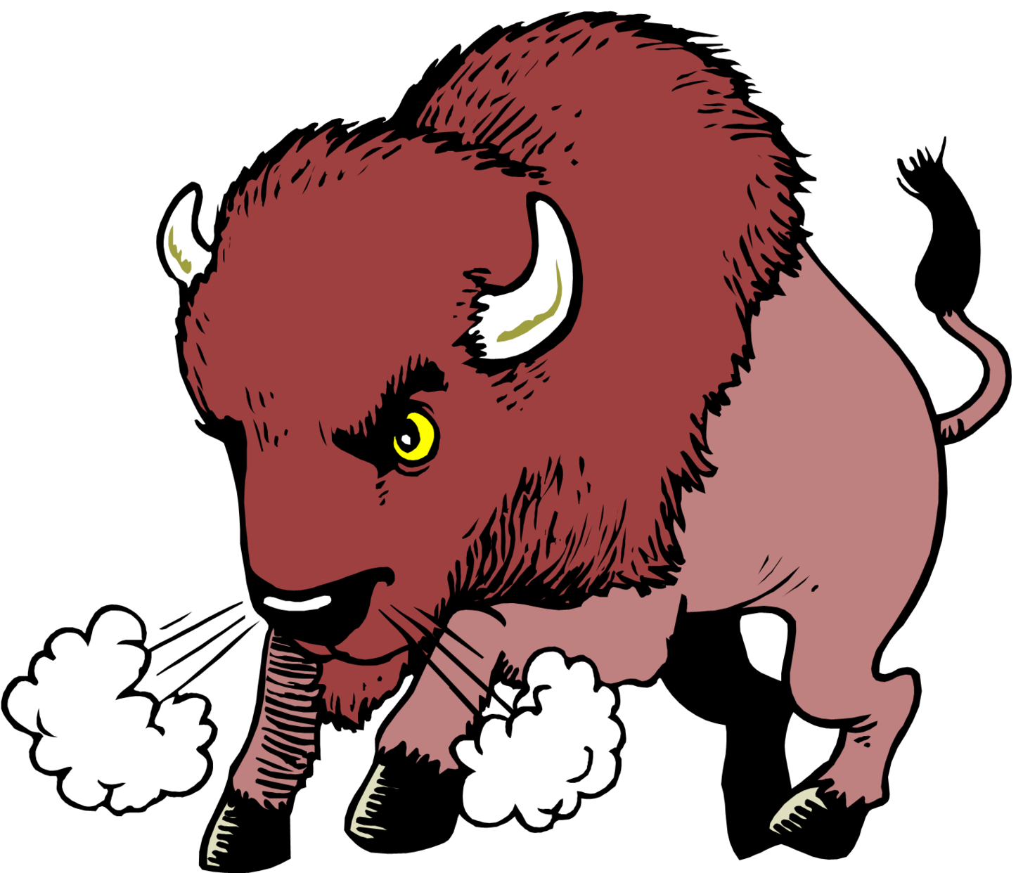 Buffalo head free download. Bison clipart angry