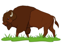 Buffalo clipart clip art. Free pictures graphics illustrations