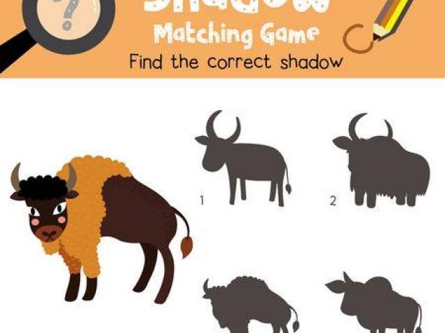 Cattle x free clip. Bison clipart baby bison