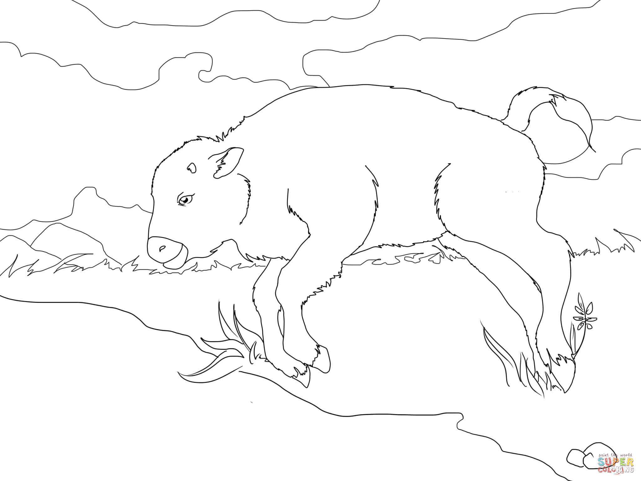 Bison clipart baby bison. Coloring page free printable