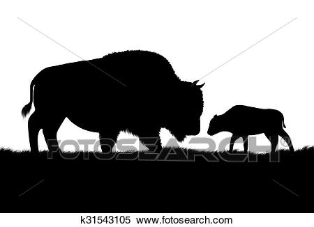 Free cattle download clip. Bison clipart baby bison