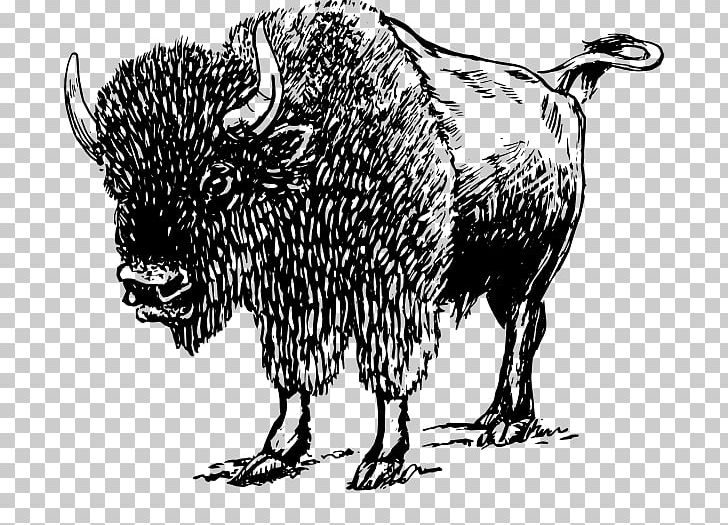 Bison clipart black and white. American png art