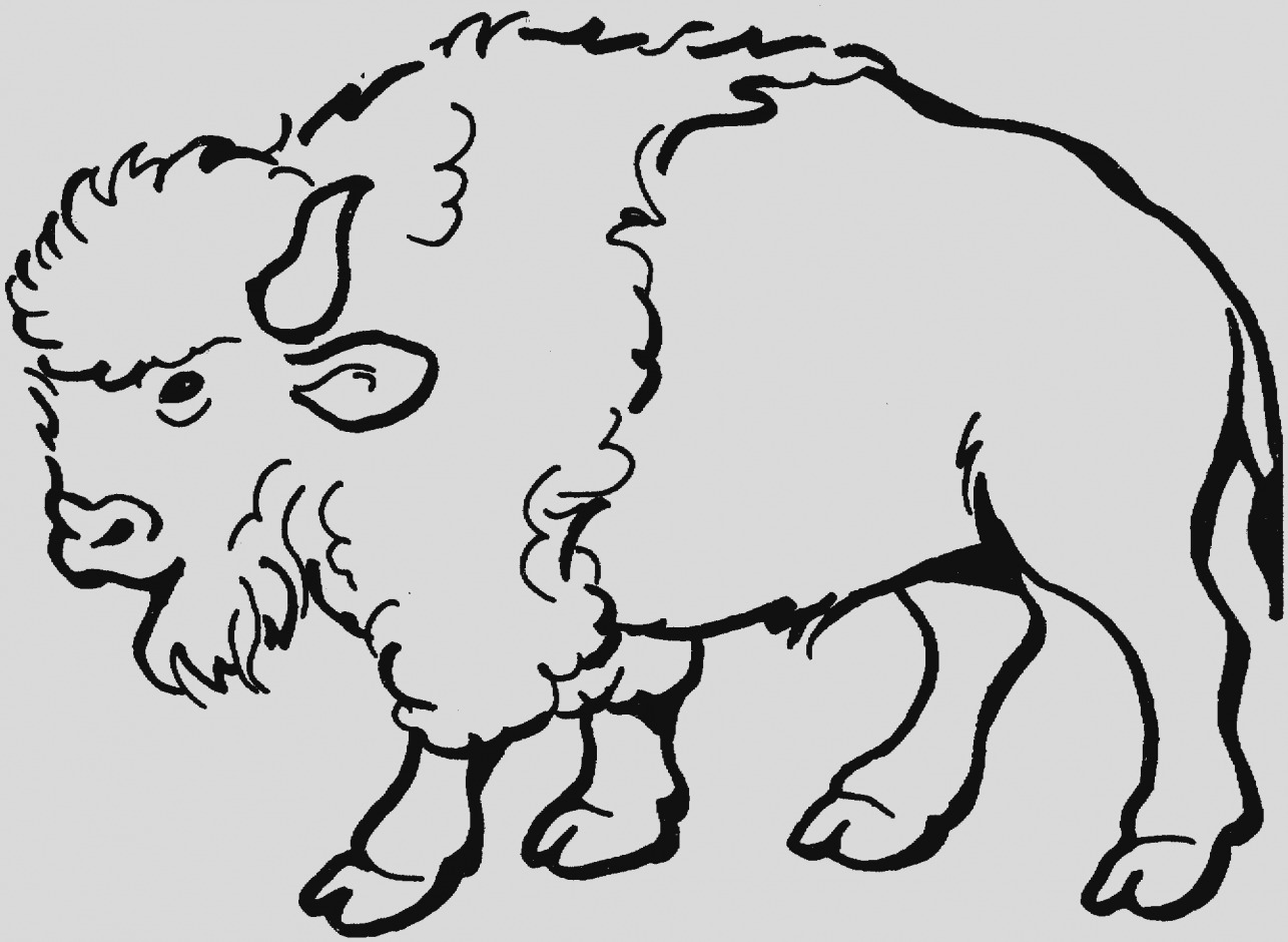 Gallery of clip art. Bison clipart bufallo