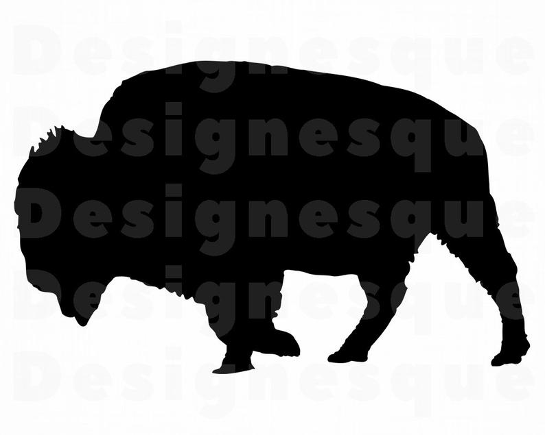 Buffalo clipart bison. Svg files for cricut