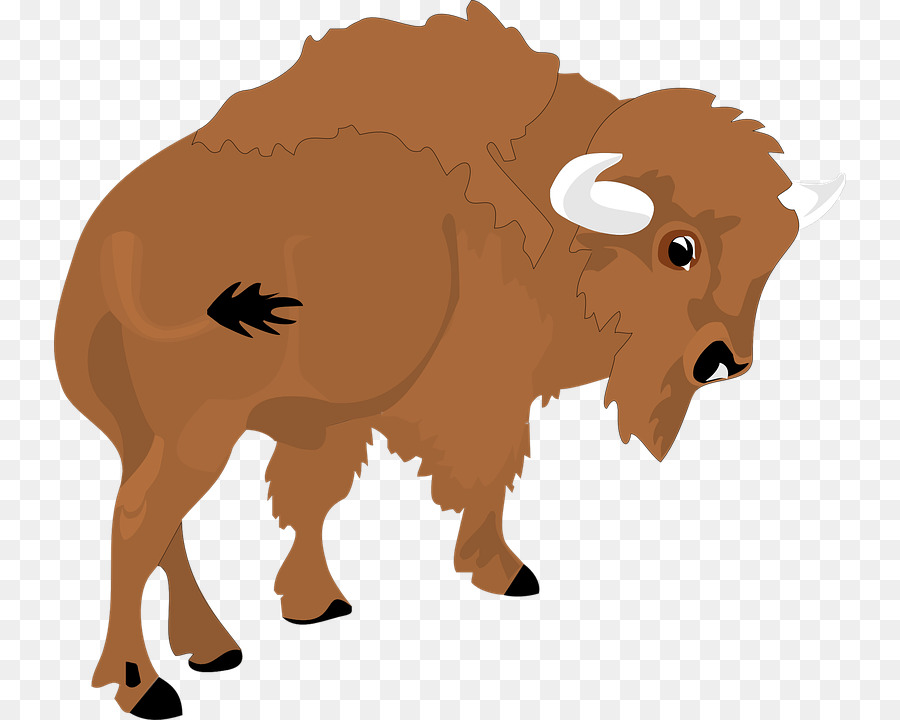 Buffalo clipart bison. American animal hunting clip