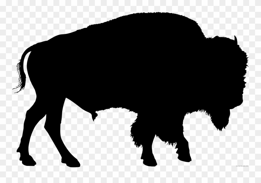 Clip art animal american. Buffalo clipart bison