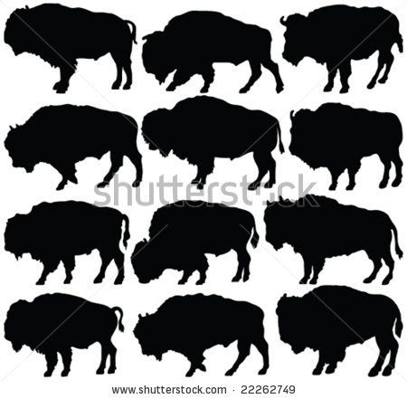 Bison clipart buffalo herd. Outline drawing at getdrawings