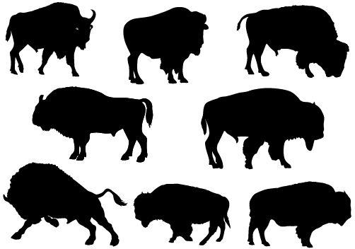 Bison clipart buffalo silhouette. Skull at getdrawings com