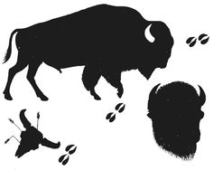 Vector illustration of wall. Bison clipart buffalo silhouette