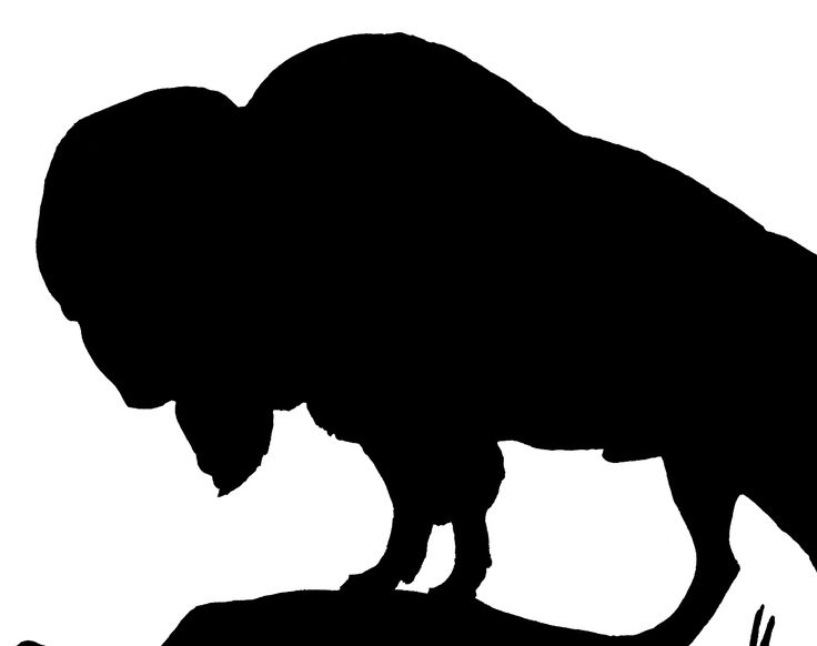 Head at getdrawings com. Bison clipart buffalo silhouette