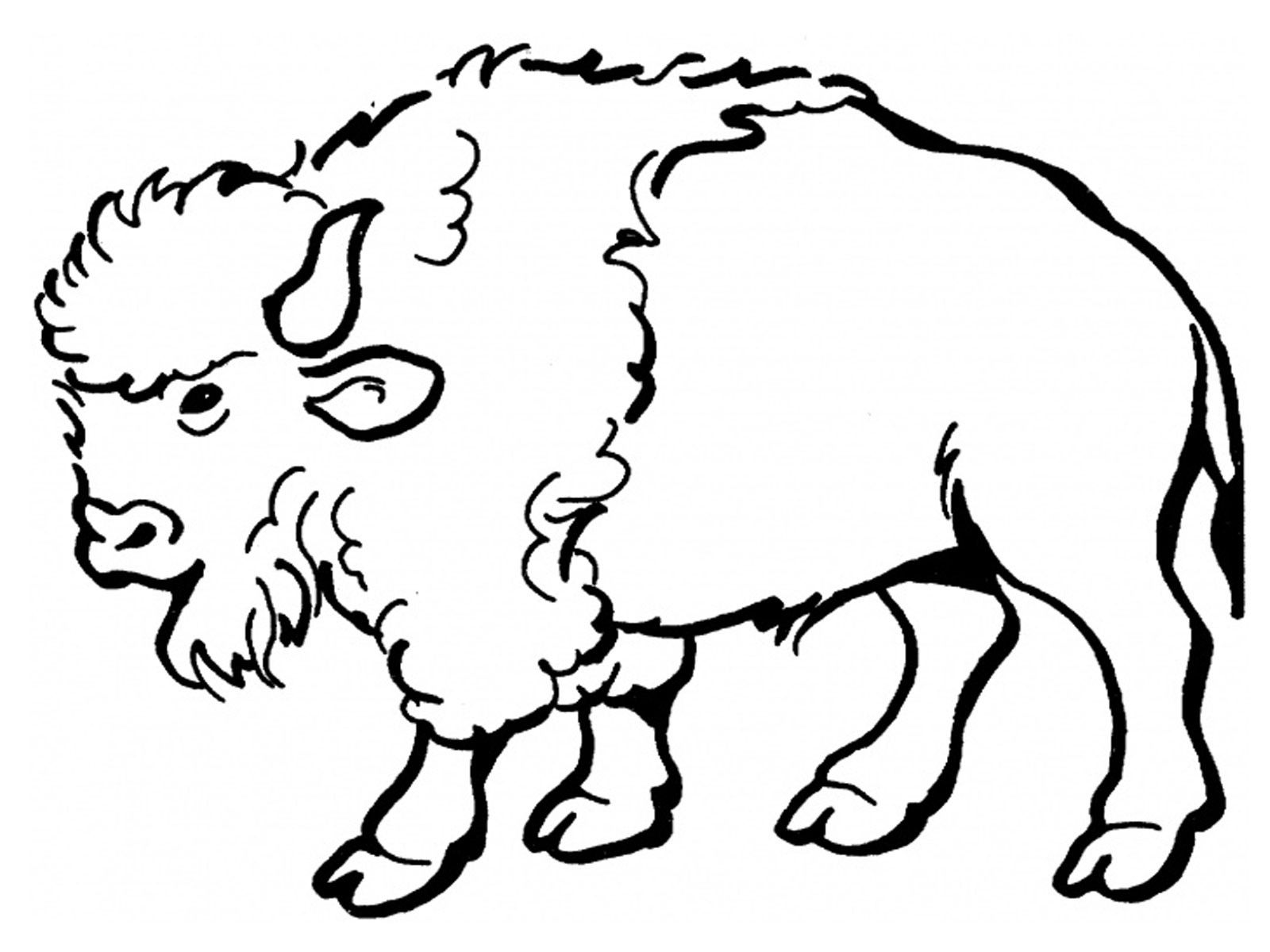 Bison clipart coloring page. Free printable pages for