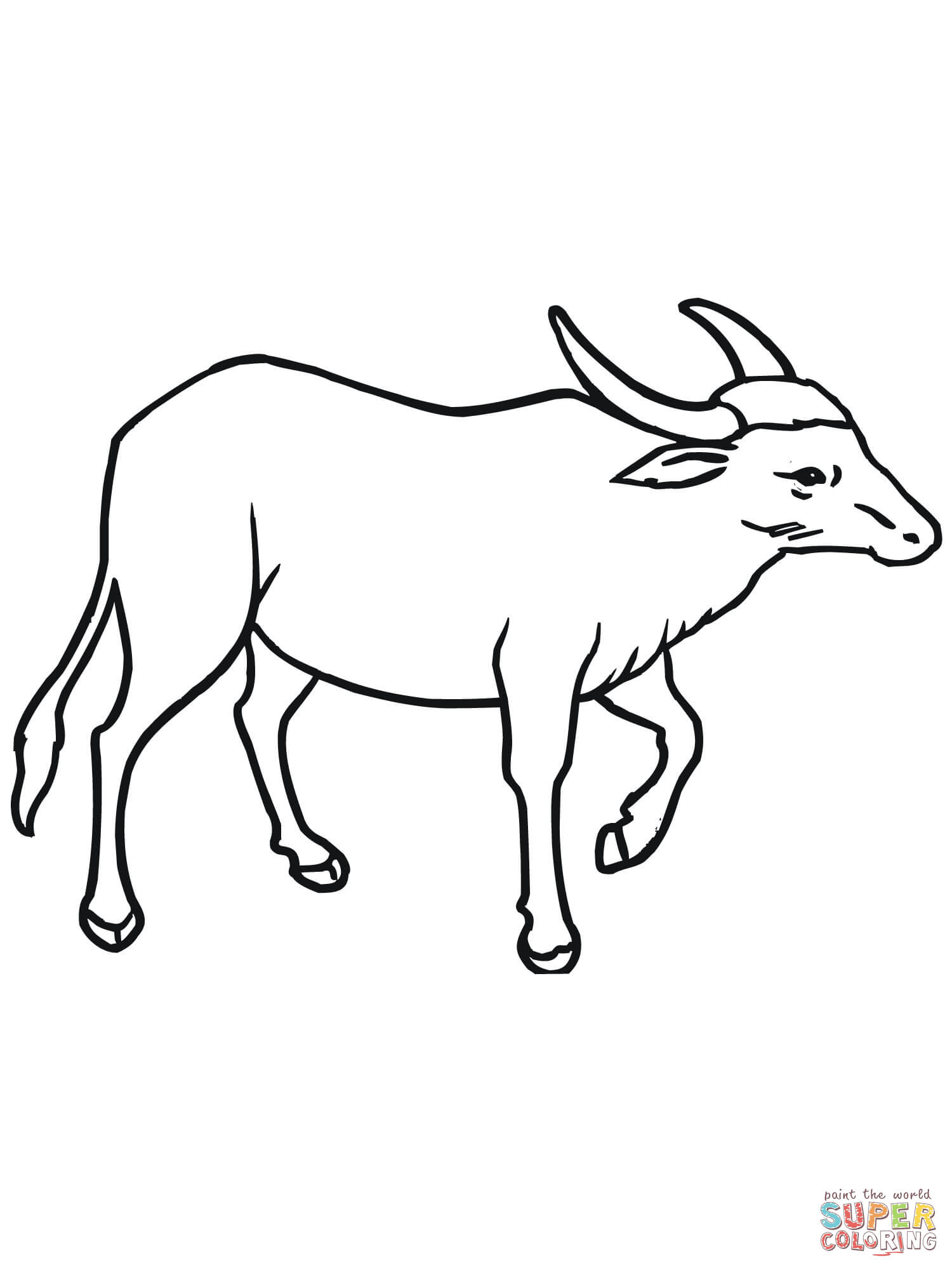 Wild asian water buffalo. Bison clipart coloring page