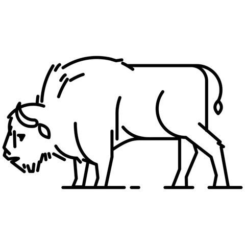 European free printable pages. Bison clipart coloring page
