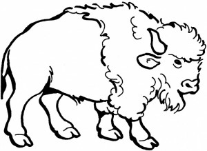 Bison clipart coloring page. Nice american for kids