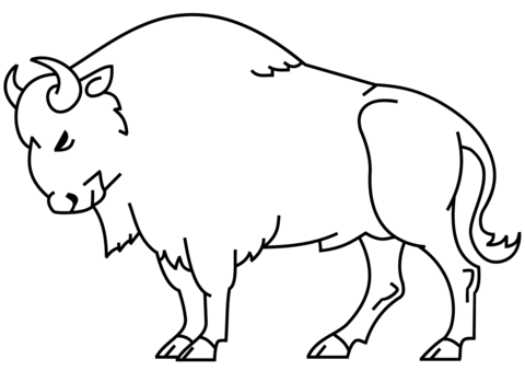 Bison clipart coloring page. Free printable pages
