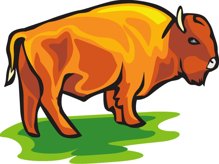 Free download best on. Bison clipart cute