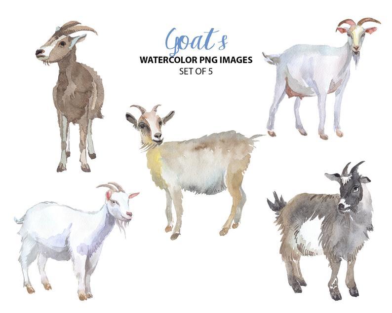 Bison clipart cute. Goat watercolor nature clip
