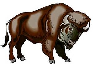 best coloring pages. Bison clipart cute