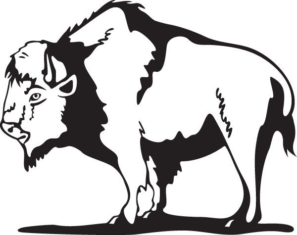 Buffalo clipart stencil.  best stamps to