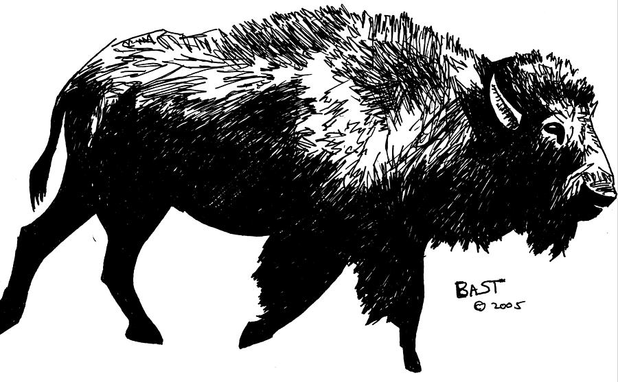 Bison clipart drawing. By lloyd bast
