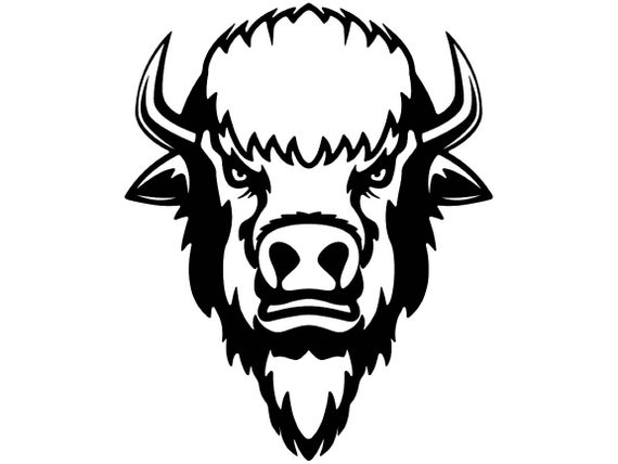 Buffalo head wild animal. Bison clipart face