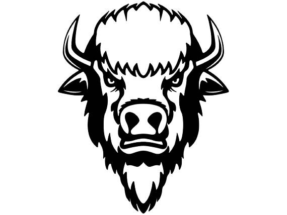 Bison clipart face. Buffalo head wild animal