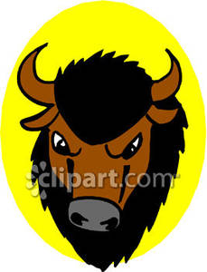 Bison clipart face. The of a panda